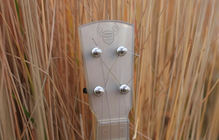 Outdoor_ukulele_natural_grass